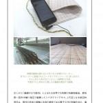 Web Designing (2014-01-18)
